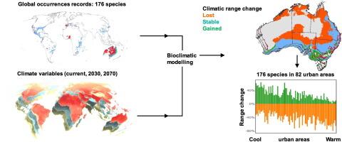 Substantial declines in urban tree habitat predicted under
