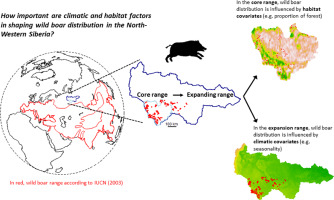 Where winter rules: Modeling wild boar distribution in its