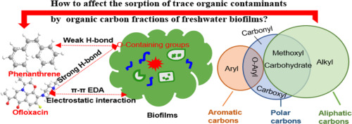 Influence of organic carbon fractions of freshwater biofilms