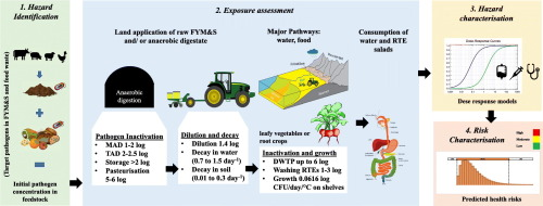 Anaerobic digestion of agricultural manure and biomass