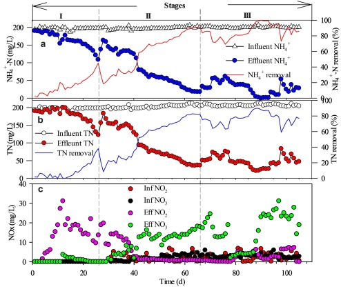 Modeling the performance of Single-stage Nitrogen removal