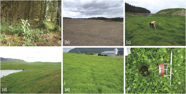 Transition In The Isotopic Signatures Of Fatty Acid Soil Biomarkers Under Changing Land Use Insights From A Multi Decadal Chronosequence Sciencedirect