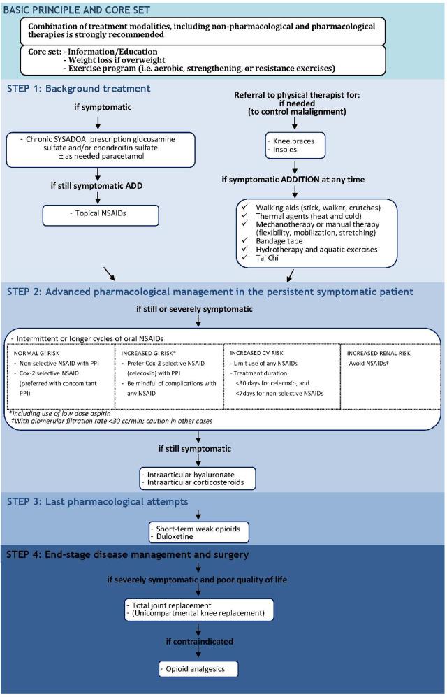 osteoarthritis guidelines 2020)