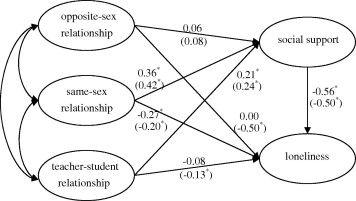 Adolescent interpersonal relationships, social support and