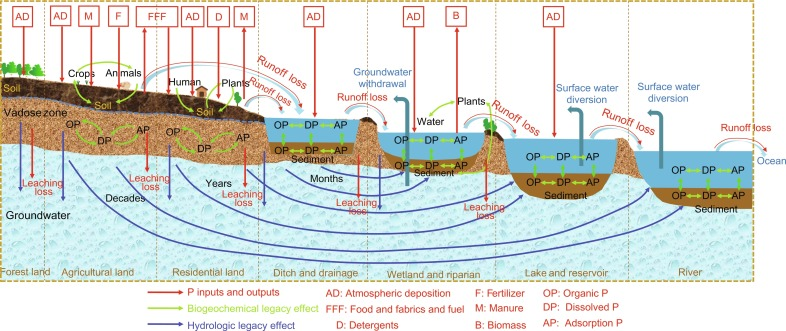 Legacy Nutrient Dynamics at the Watershed Scale: Principles
