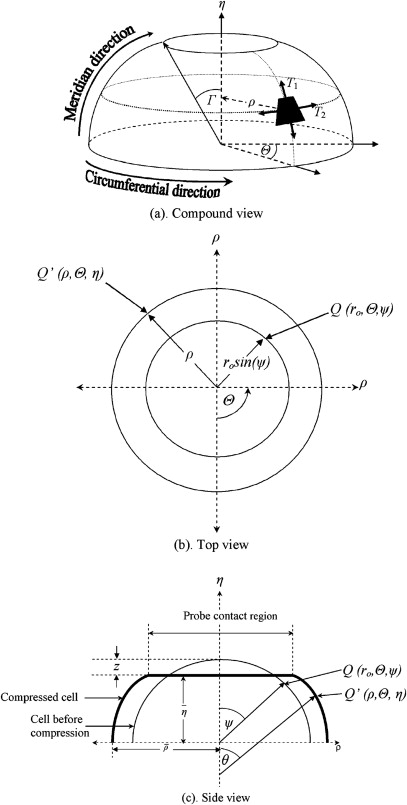Chapter 2 Micromanipulation In Mechanical Characterisation Of Single