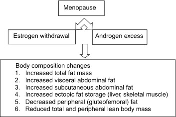 Metabolic Syndrome and Menopause: Pathophysiology, Clinical and Diagnostic  Significance - ScienceDirect