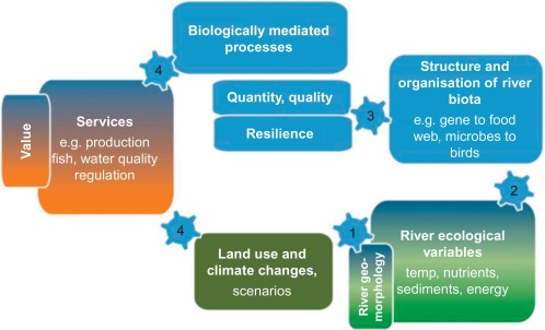 The Challenges of Linking Ecosystem Services to Biodiversity