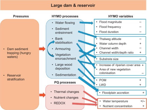Effective River Restoration in the 21st Century: From Trial