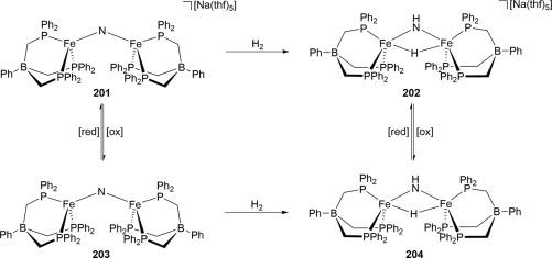Recent Advances in Transition Metal-Catalyzed Dinitrogen
