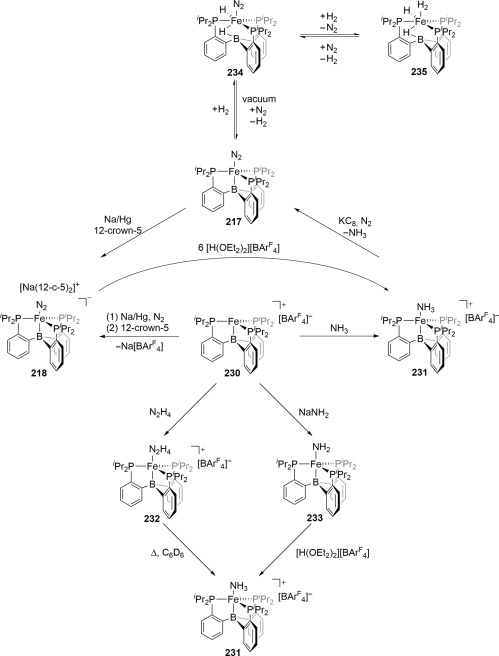 Recent Advances In Transition Metal Catalyzed Dinitrogen Activation