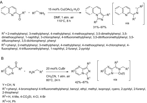 Carbon–Nitrogen Bond Formation Through Cross-Dehydrogenative