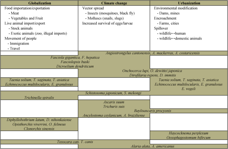 helminth zoonotic diseases)