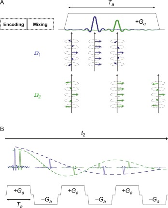 Ultrafast 2D NMR: Methods and Applications - ScienceDirect