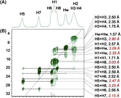 Solid-State NMR Studies of Molecular Crystals - ScienceDirect