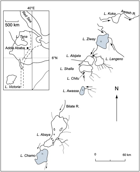 Seasonal variations in phytoplankton biomass and primary production