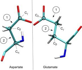 phi angle amino acid