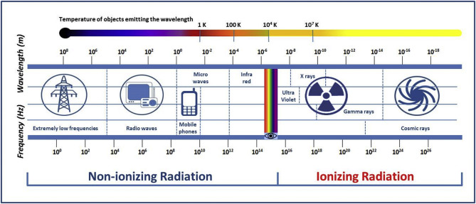 Biological effects of non-ionizing electromagnetic fields: Two sides