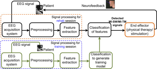 Neural and cortical analysis of swallowing and detection of motor block diagram illustrating a motor imagery based rehabilitation system for dysphagia patients ccuart Image collections