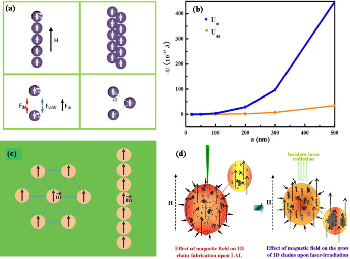 External field-assisted laser ablation in liquid: An efficient
