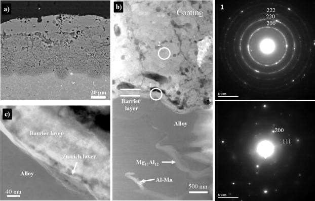 Fundamentals and advances in magnesium alloy corrosion