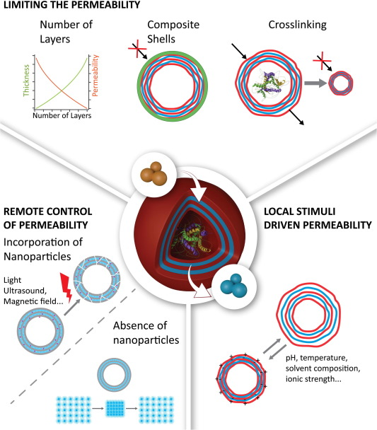 Polymer capsules as micro-/nanoreactors for therapeutic