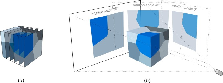 Generation of 3D representative volume elements for heterogeneous