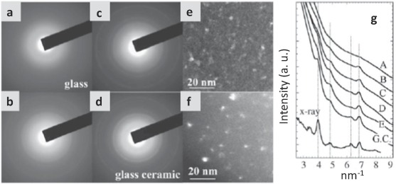 Transparent glass-ceramics functionalized by dispersed crystals