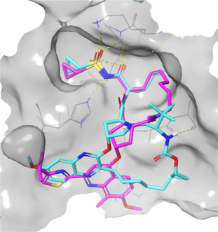 Current Trends in Macrocyclic Drug Discovery and beyond-Ro5