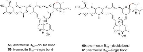Resultado de imagen de avermectin mechanism