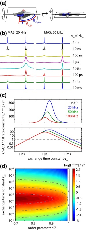 Studying Dynamics By Magic Angle Spinning Solid State Nmr