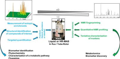 Plant Metabolism As Studied By Nmr Spectroscopy Sciencedirect