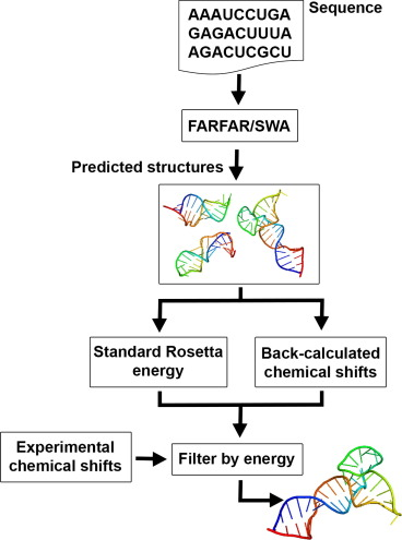 Chemical shift-based methods in NMR structure determination