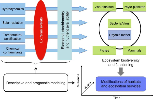 Marine ecosystems' responses to climatic and anthropogenic