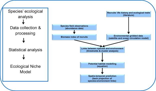 Modelling of European hake nurseries in the Mediterranean