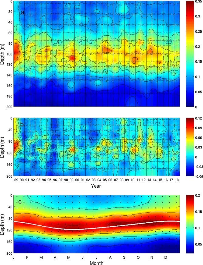 Eduo special color surf Castin measurements: 0.303 0.230 0.210 mm 0.260