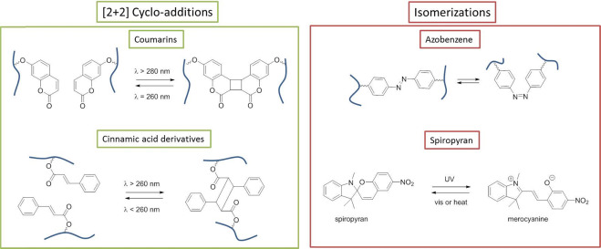 Shape memory polymers: Past, present and future developments