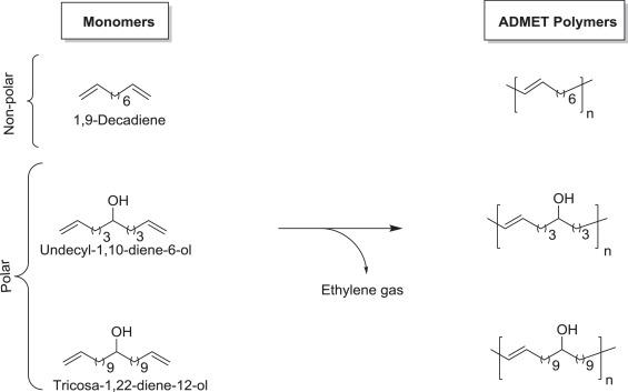 acyclic diene metathesis polymerization mechanism