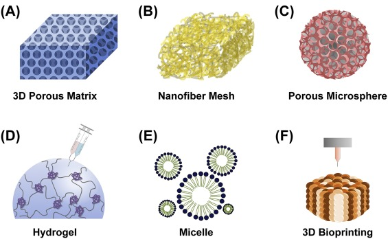 Biopolymer-based functional composites for medical applications ...