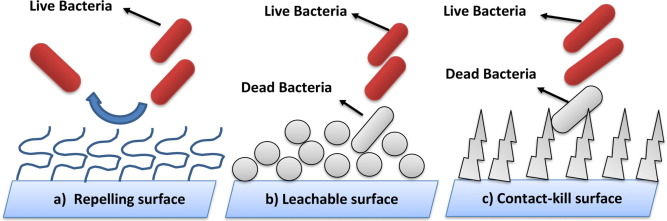 Antibacterial surface design – Contact kill - ScienceDirect