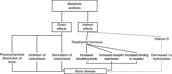 Risks Of Chronic Metabolic Acidosis In Patients With Chronic Kidney Disease Sciencedirect