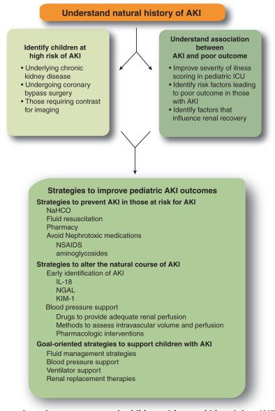 Pediatric Acute Kidney Injury The Use Of The Rifle Criteria Sciencedirect