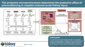 The proteome microenvironment determines the protective