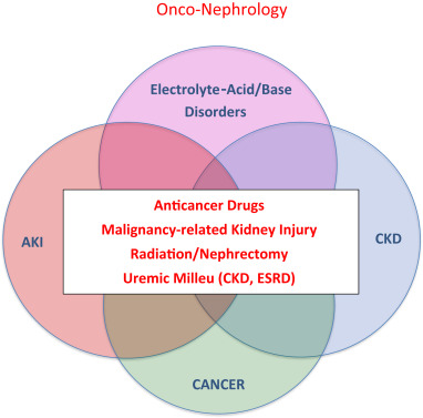 Summary of the International Conference on Onco-Nephrology: an