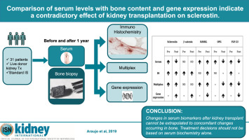 Comparison of serum levels with bone content and gene expression