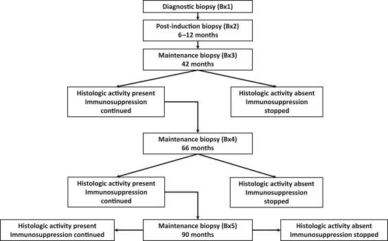 Kidney Biopsybased Management Of Maintenance