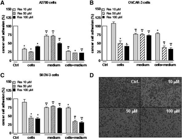 Resveratrol inhibits ovarian cancer cell adhesion to