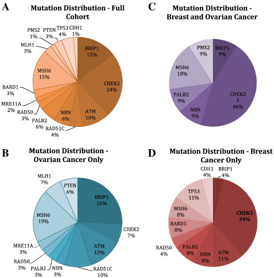 Hereditary Predisposition To Ovarian Cancer Looking Beyond Brca1 Brca2 Sciencedirect