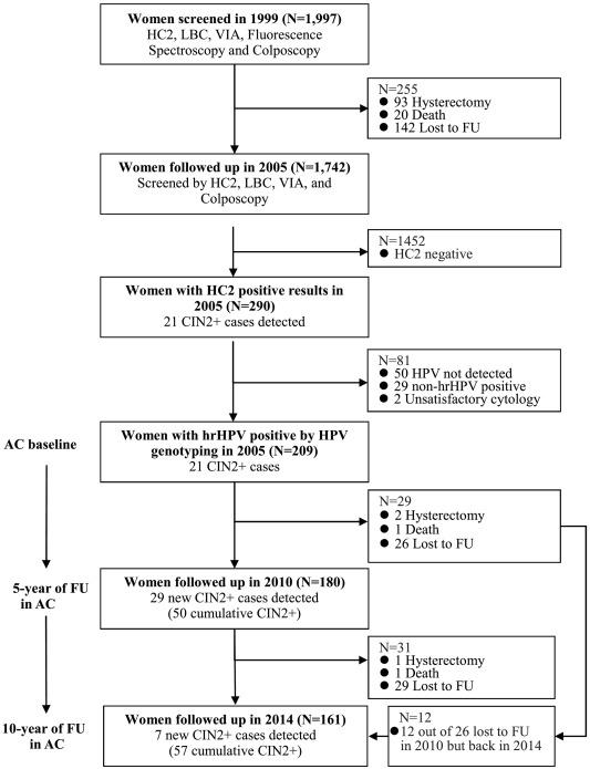 HPV detecție tipuri cu risc crescut + genotipare extinsă, Hpv high risk non 16 18