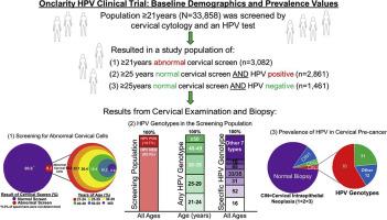 hpv human papillomavirus test positive